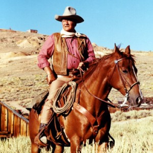 cowboyswayne2