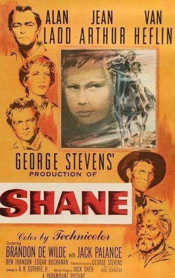 Shane3