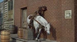 cat-ballou-horse