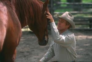 HorseWhispWhispering